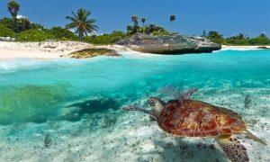Vacanta in Zanzibar la doar 488 euro/p (zboruri + 7 nopti de cazare cu mic dejun inclus + 2 nopti extra in Bruxelles)
