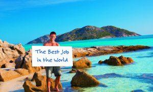 Joburi care îți permit sa calatoresti în toată lumea. Iti doresti unul?
